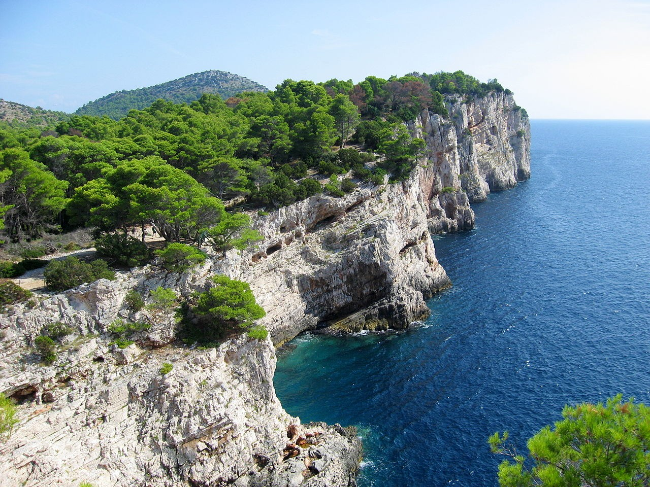 Rocks and green trees in Telascica bay